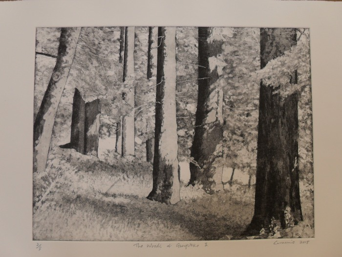 The Woods at Greystoke I: Etching and Aquatint 2018 29.5x39cm Edition of Eight